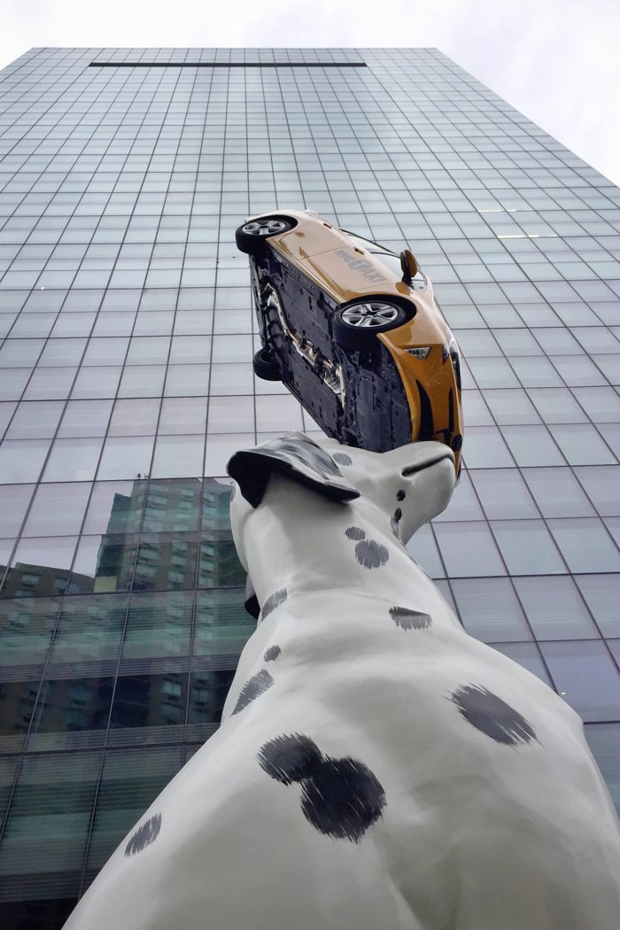 Donald Lipski Spot Hund Taxi Kunst