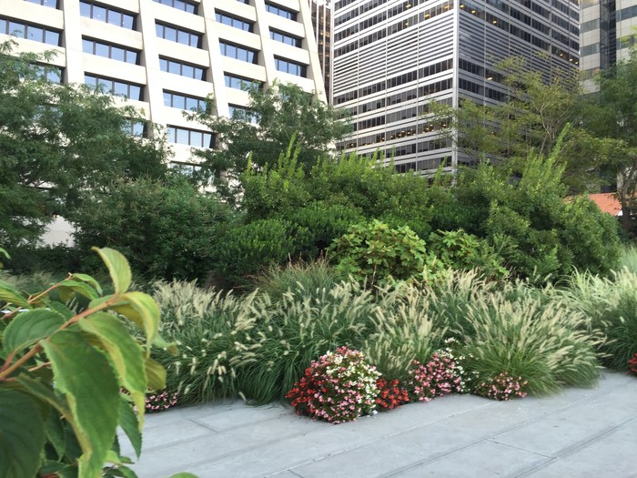 Elevated Acre Park Financial District