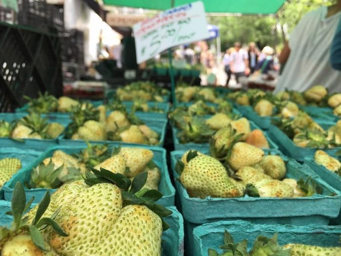 Grüne Erdbeeren für teuer Geld