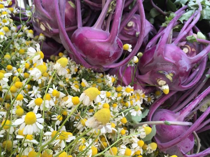 Kamille als essbare Blüten