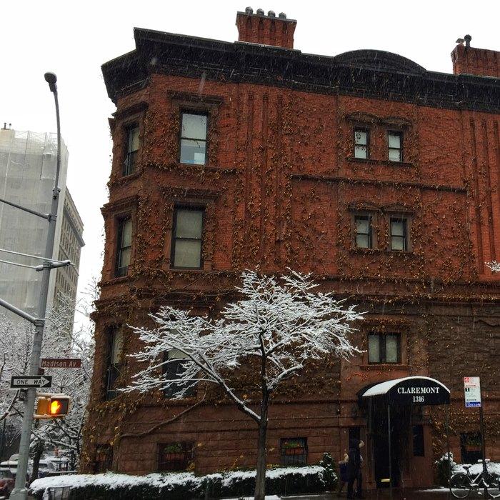 Carnegie Hill Schnee