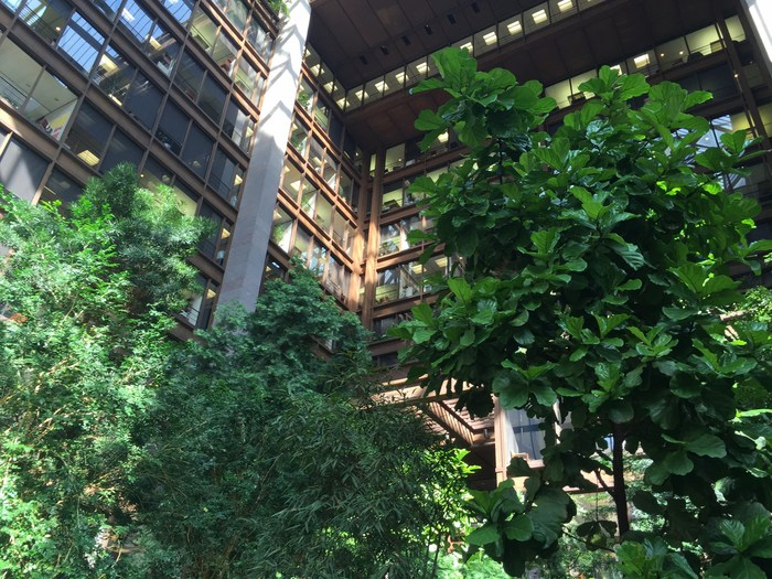 Ford Foundation Atrium Indoor Park