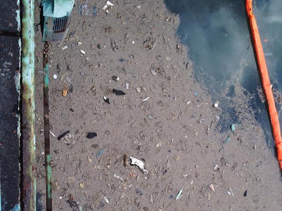 Abwasser und Giftstoffe im Gowanus Canal