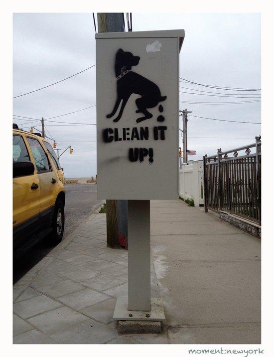 Mach das sauber! Hundekacke in New York