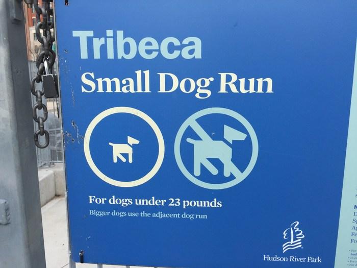 Hundepark in New York
