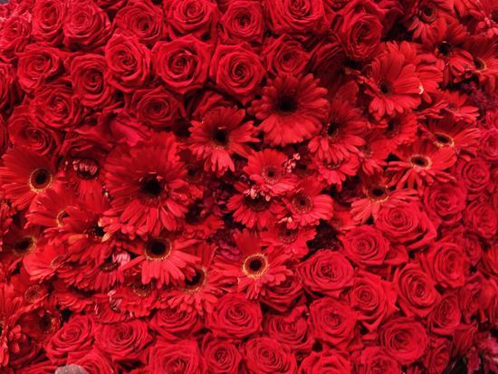 Blumen in der Macy's Flower Show