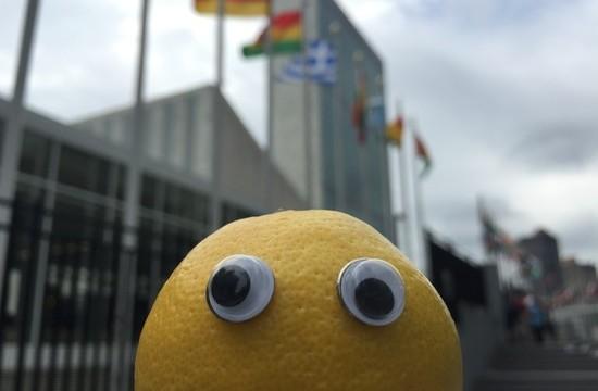 Zitrone vor der Uno