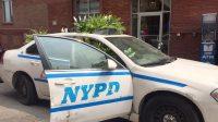 Polizei Blumen NYPD