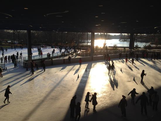 Lakeside Ice Rink Prospect Park Brooklyn