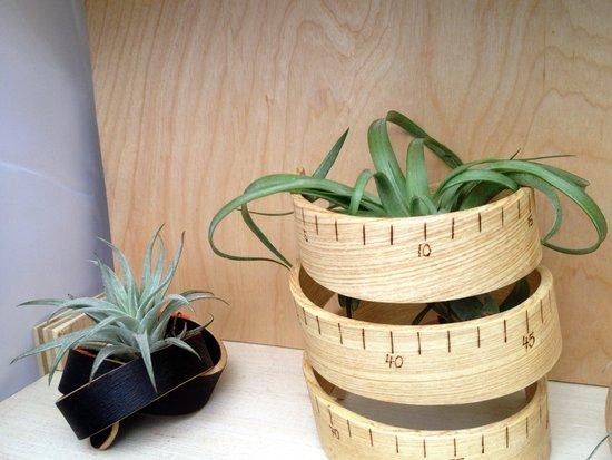 Holz von Art of Plants