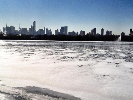 Central Park Reserve im Eis