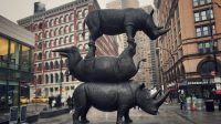 Rhinos Last Three Gillie and Marc Astor Place