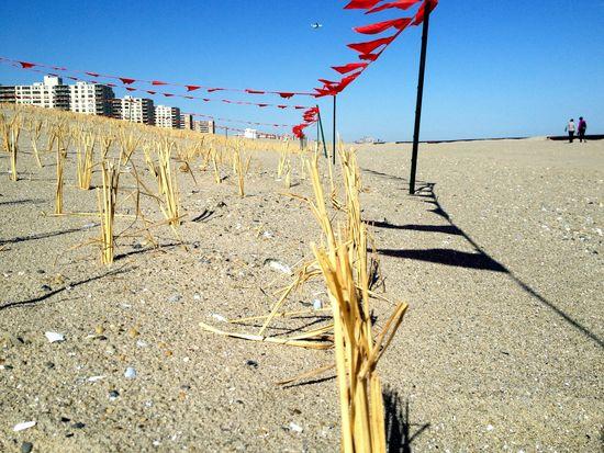 Düne in Rockaway Beach