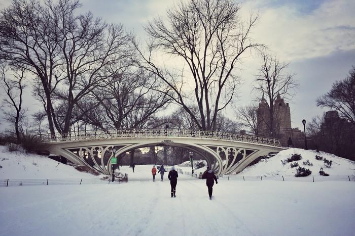 Schnee 2017 Central Park