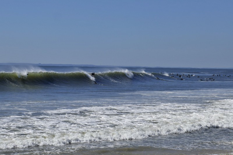 Rockaway Surfer Dorian