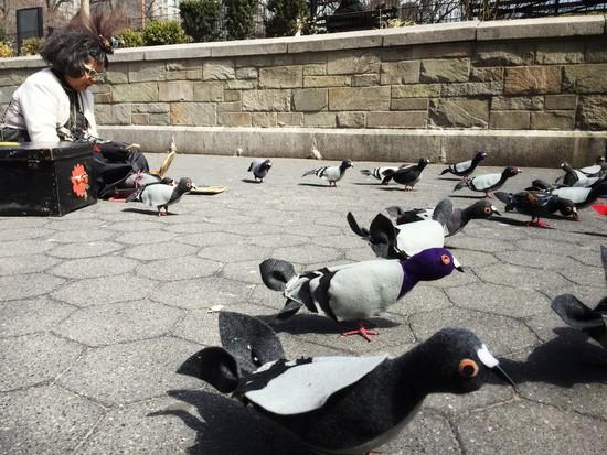 Mother Pigeon Tina Trachtenberg