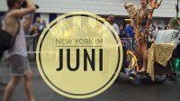 New York im Juni