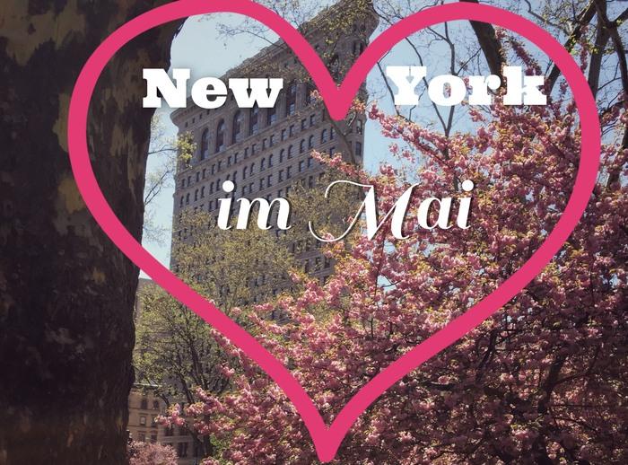 New York im Mai Termine