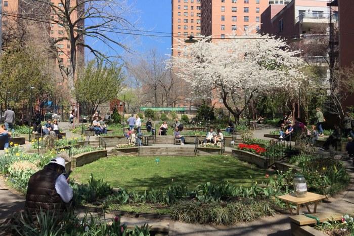 Tulip Festival Westside Community Garden