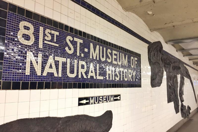 U-Bahn-Kunst 81st Street Dinosaurier