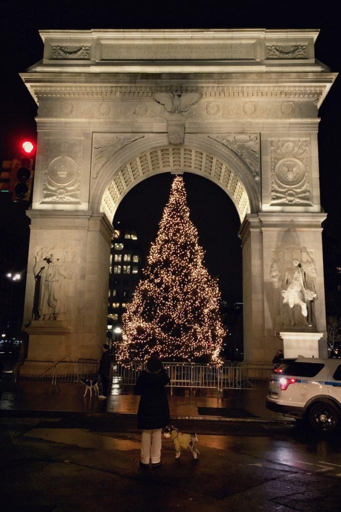 Washington Square Christmas Tree