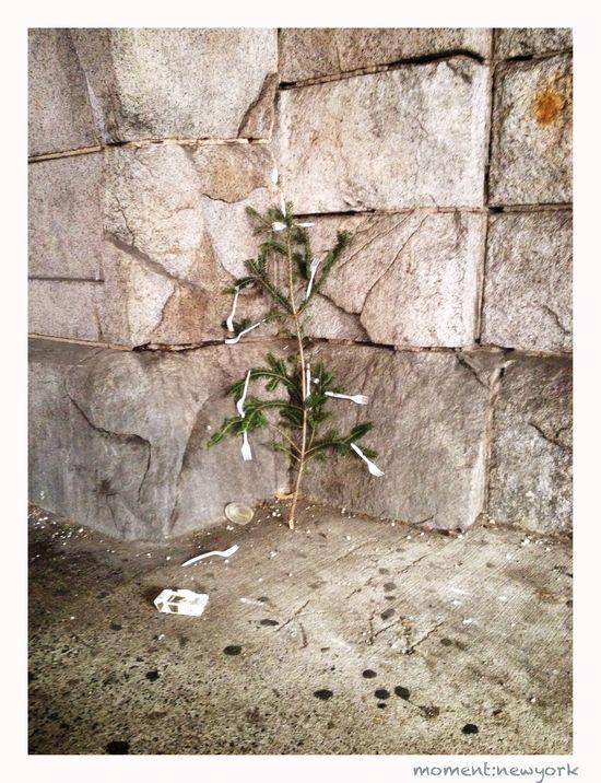 Weihnachtsbaum obdachlos New York